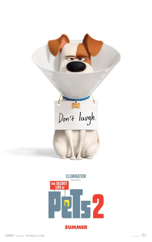 Cinema: The Secret Life of Pets 2 @ Midsomer Norton Town Hall | Midsomer Norton | United Kingdom